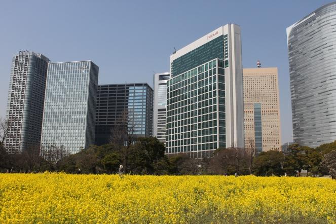 Hama Rikyu Gardens, Chūō