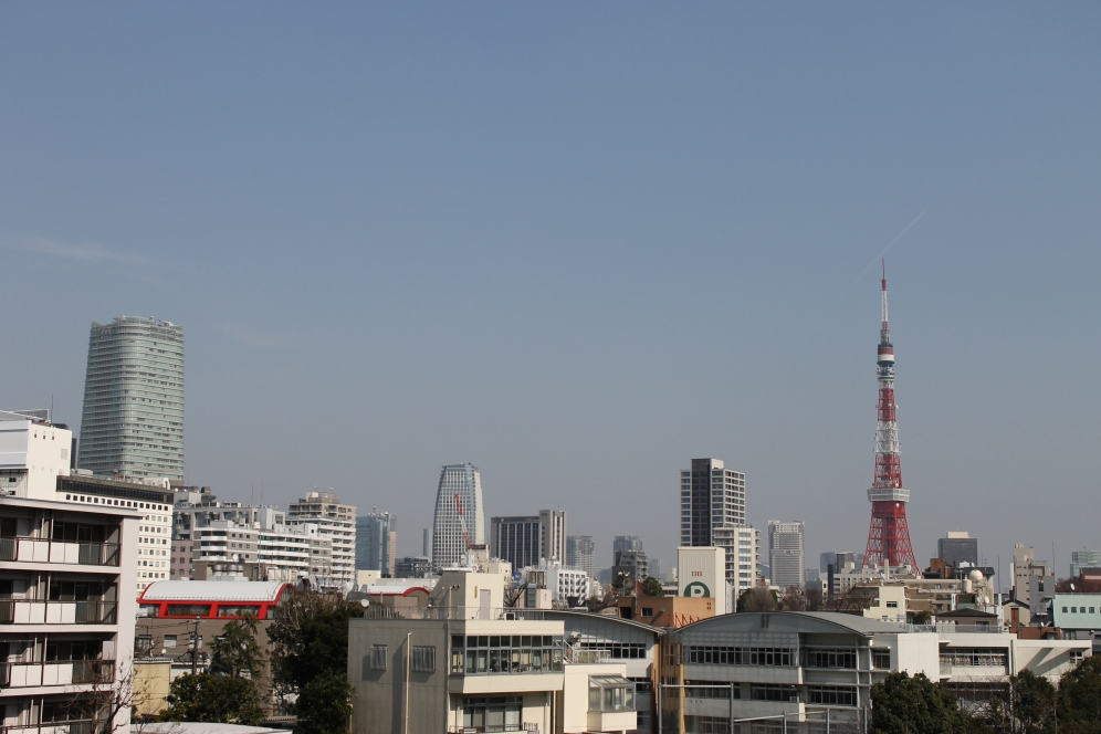 View from Roppongi Hills