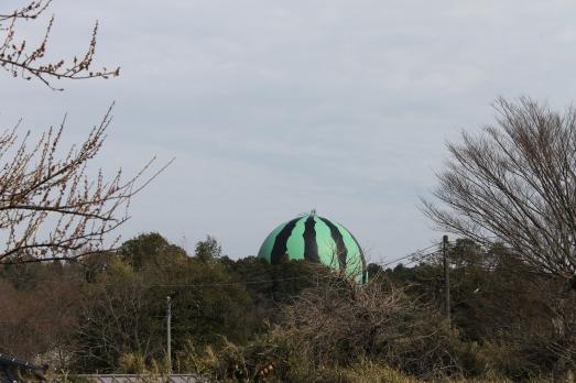 Big Melon