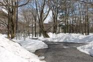 Bit of snow, Nikko