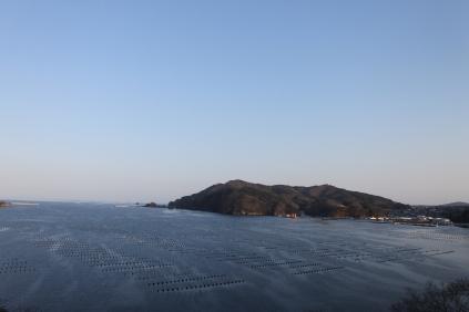 Ofunato Bay