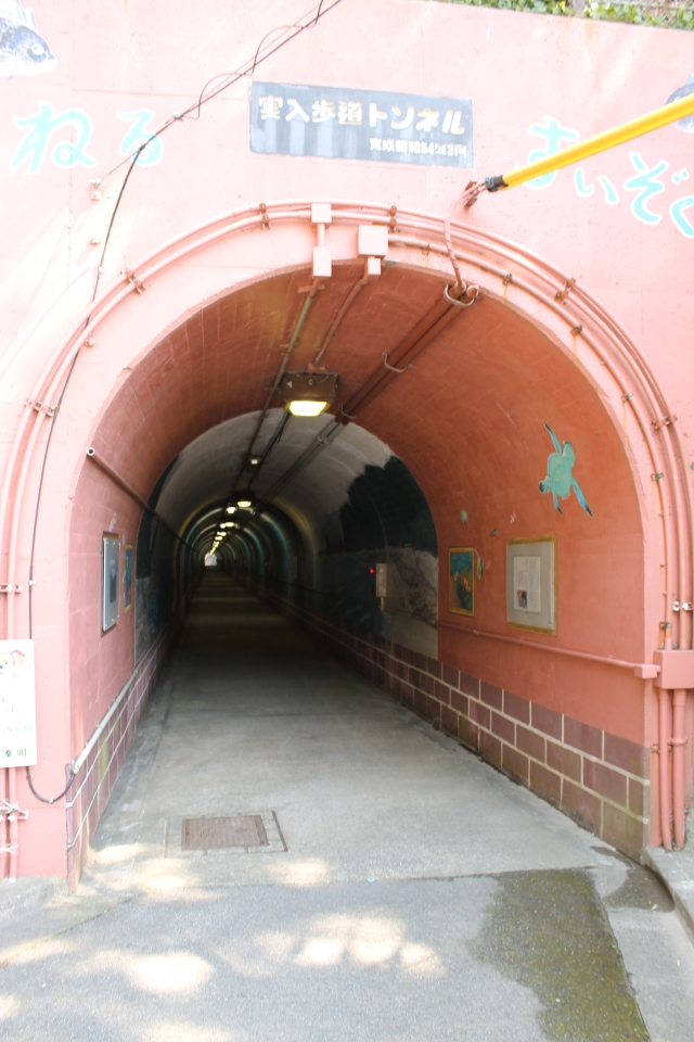 Cyclist tunnel - Kamogawa