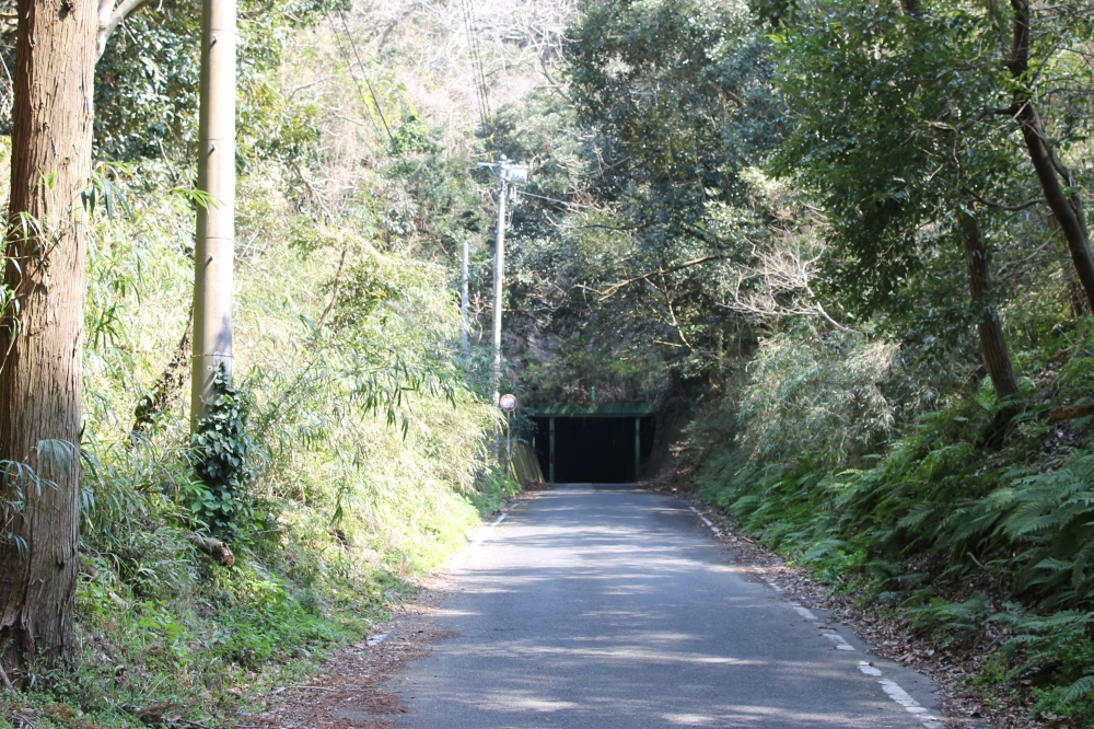 Spirited Away Tunnel